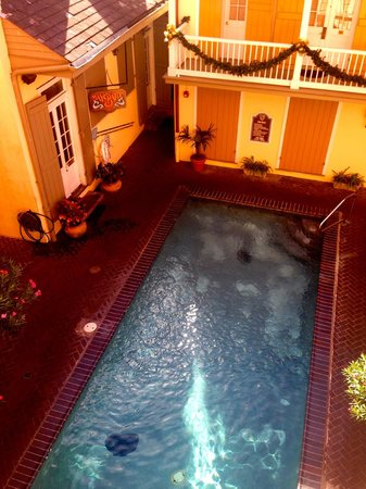 Dauphine Orleans Hotel : Salt water pool