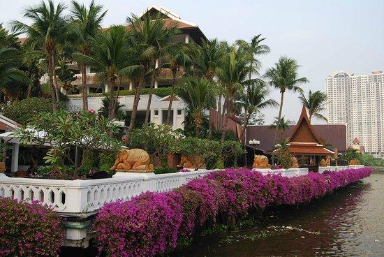 Anantara Riverside Bangkok Resort: From the Hotel pier