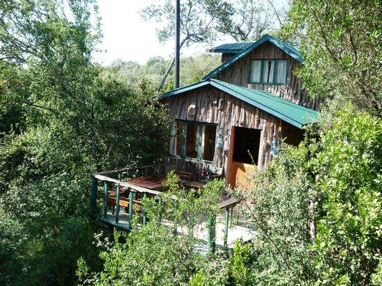 Colobus Cottages: Cottage 3