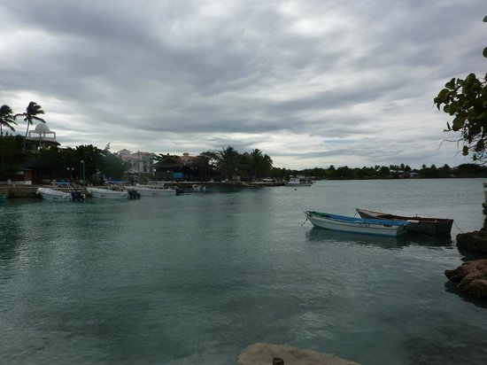 Catalonia Gran Dominicus : plage bayahibe
