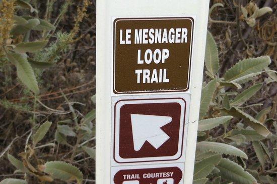 Deukmejian Wilderness Park: 1.12.2014 - Les Mesnager Loop Trail