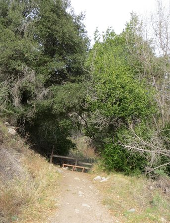 Deukmejian Wilderness Park : shaded resting bench, end of the trail
