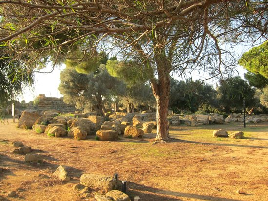Tempio di Ercole: Temple of Hercules ・・・積みおげられた遺跡石