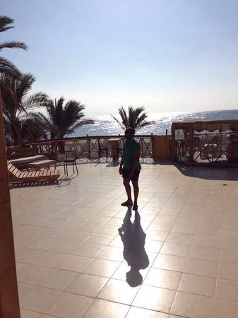 Red Sea Relax Resort: Terrace at Red Sea relax....