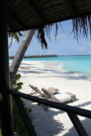 The Sun Siyam Iru Fushi Maldives: Вид из домика