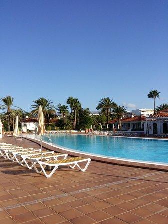 Sun Club Apartments: Pool
