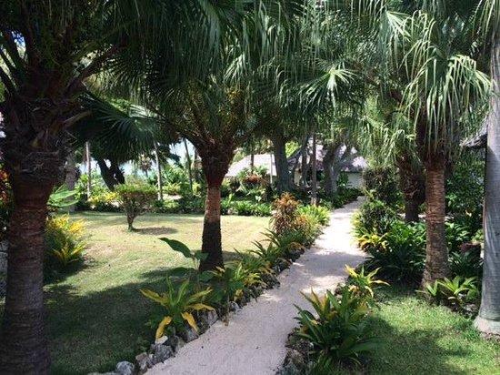 White Grass Ocean Resort & Spa: Pour aller au bangalow