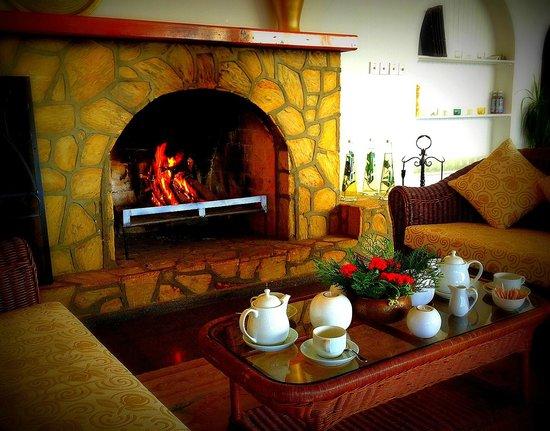 Onar Holiday Village: Fireplace