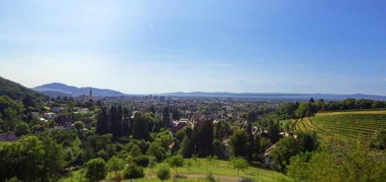 Mercure Hotel Panorama Freiburg: Aussicht