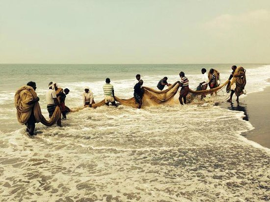 Palm Tree Heritage: noisy and hardworking fishermen