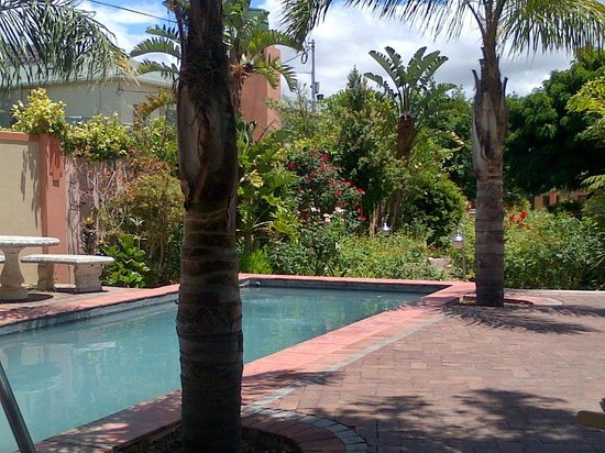 Montagu Country Hotel : Pool area