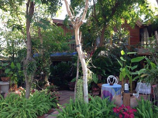 Baifern Homestay : Le jardin