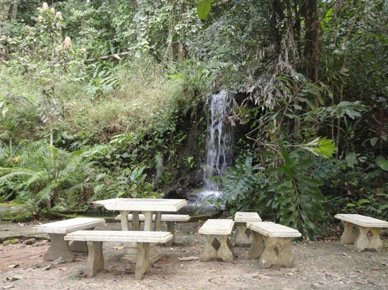Khun Korn Waterfall: Picnic area