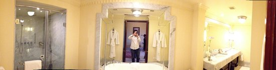 Umaid Bhawan Palace Jodhpur: In our bathroom (its a panoramic - but that might not show here)