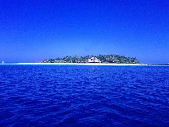 Banyan Tree Vabbinfaru : Вид на остров с лодки, плывем в Angsana Ihuru сноркать.  2013 год декабрь