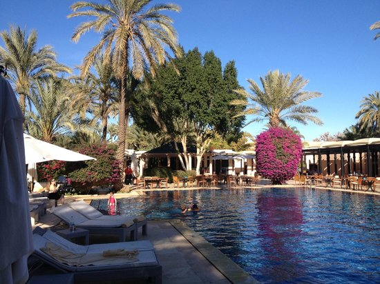 Club Med Marrakech La Palmeraie: piscine du riad 5 tridents