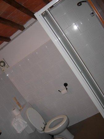 Villa Schiatti: bagno