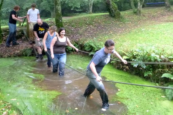 Ashcombe Adventure Centre Ltd: Gladiator Assault Course
