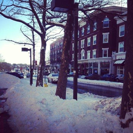 Colonnade Hotel: snowy salem
