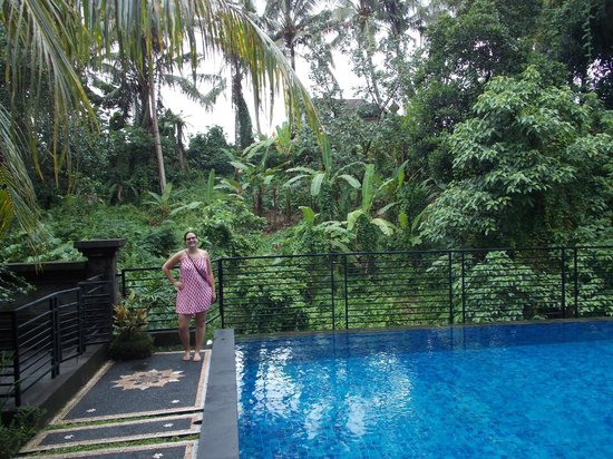 Pondok Pundi Village Inn & Spa : Infinity pool backs onto the Monkey Forrest