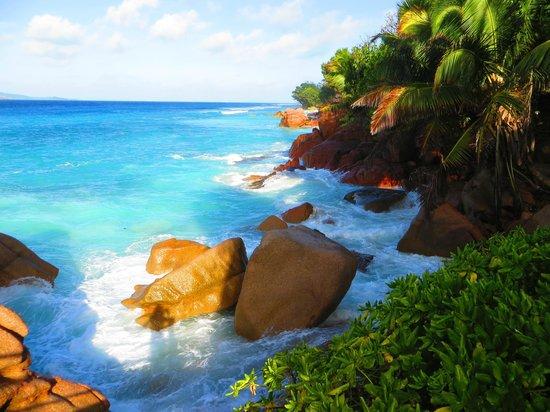 Patatran Village Hotel: Vue de la piscine