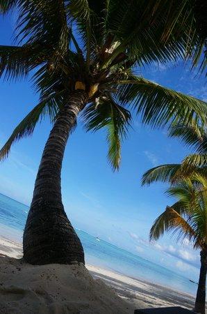 LUX* Le Morne : plage
