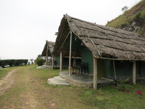 Camp Anaerangal: tent