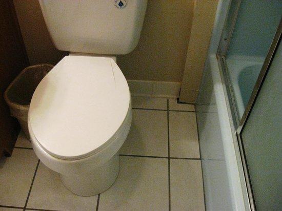 Heidi Motel: Clean Toilet