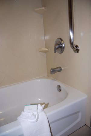 Hampton Inn and Suites - Dallas Allen: Tub