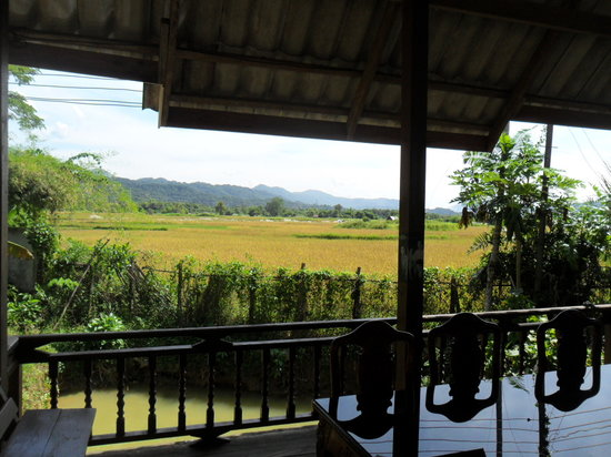 Vang Vieng Boutique Resort : View across the rice paddies to the mountains