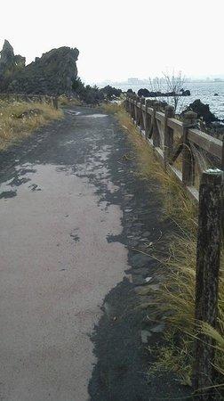 Sakurajima Lava Nagisa Promenade : 遊歩道