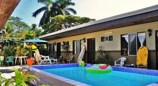Hotel Perico Azul: Pool