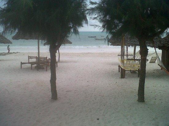 Kitete Beach Bungalows : The beach