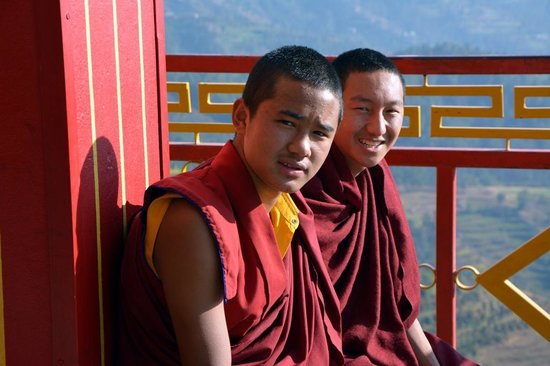 Thrangu Tashi Monastery : Taking a break