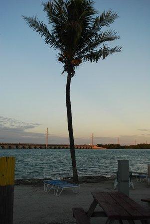 Sugarloaf Key / Key West KOA : KOA Beach