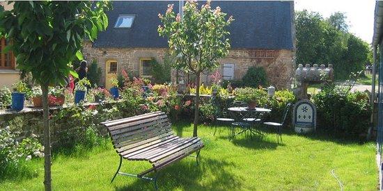 Ty puns : Le jardin de roses vu de la veranda petit dejeuner