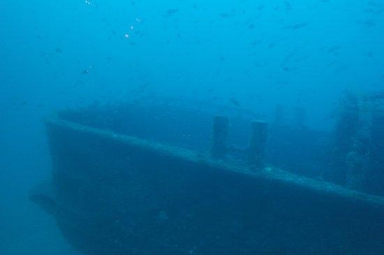Seogwipo Submarine : 난파선