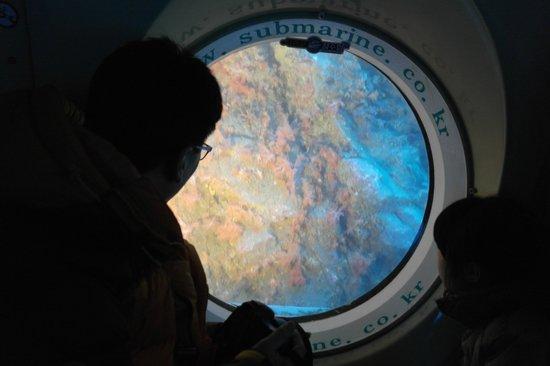 Seogwipo Submarine : 빛 받은 산호, 산호를 보는 아버지와 딸