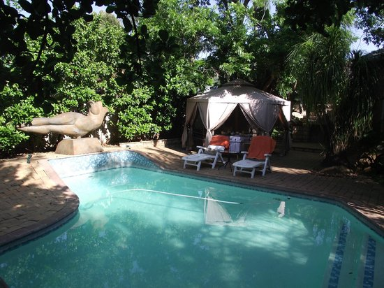 pool area picture of dinkwe guest house pretoria tripadvisor rh tripadvisor com my
