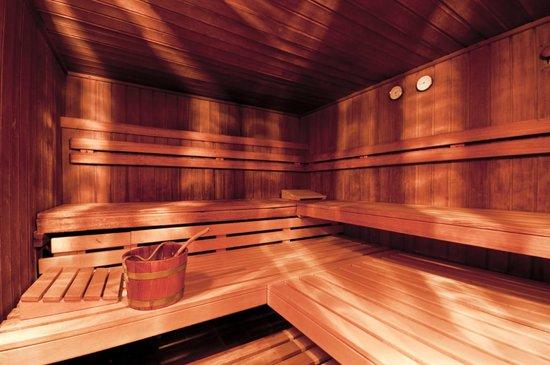 Suitehotel Kleinwalsertal: Dampfsauna