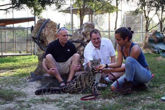 Zoological Wildlife Foundation: Cirrus our Clouded Leopard with her handler,Andrea and Michigan State Senator Joe Hune...