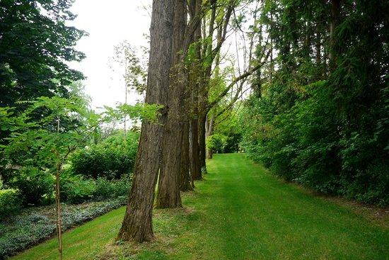 Domaine des ecureuils : Le parc