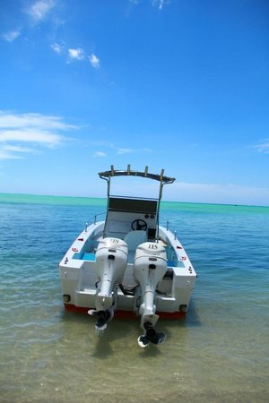 Tamarin: Le beau bateau de zilwas