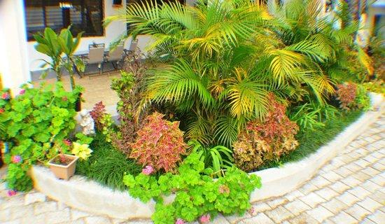 Auberge sur La Montagne : garden
