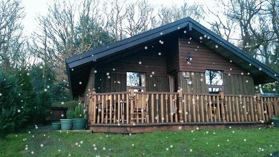 Spring Wood Lodges: The Lilleskov