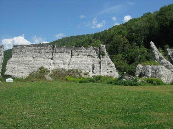 Austin, Пенсильвания: A closeup of the broken Dam.