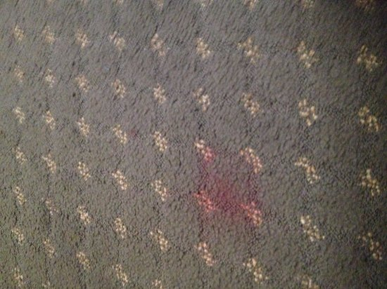 Avenue Hotel: Carpet stain