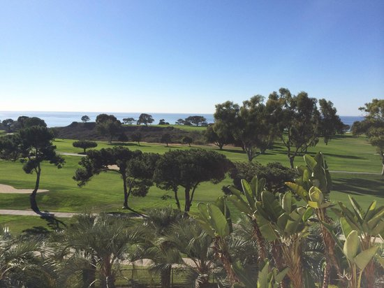 Hilton La Jolla Torrey Pines : Torrey Pines 18th hole