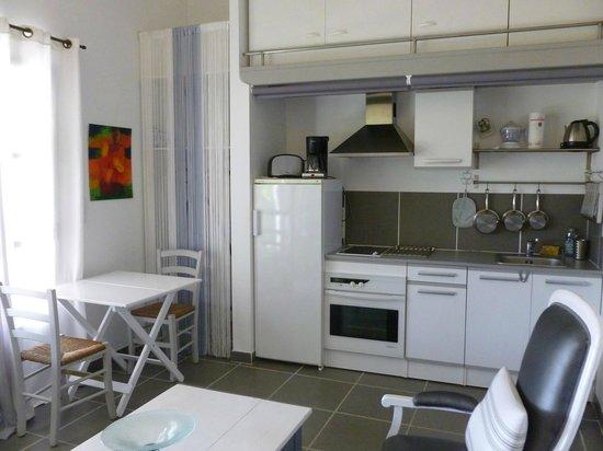 Le Domaine de Tini : Cuisine du studio