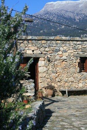 Guesthouse Alonia: alonia